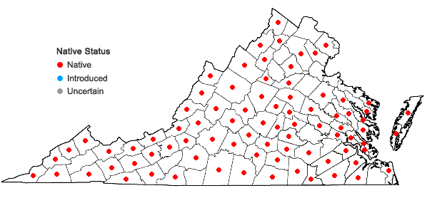 Locations ofCorallorhiza odontorhiza (Willd.) Nuttall var. odontorhiza in Virginia