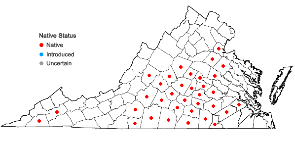 Locations ofCoreopsis auriculata L. in Virginia