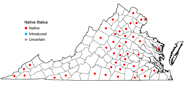 Locations ofCoreopsis tripteris L. in Virginia