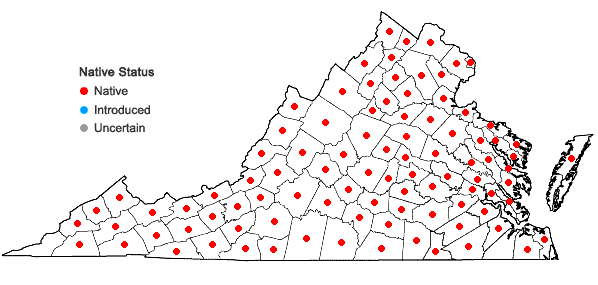 Locations ofCornus amomum P. Mill. in Virginia