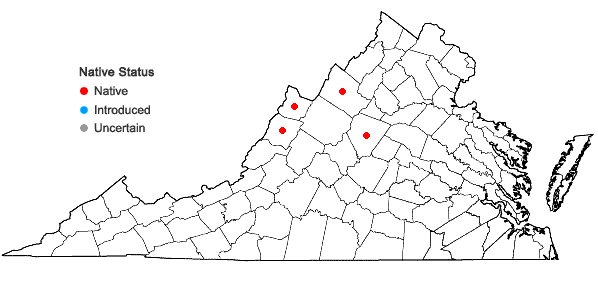Locations ofCornus canadensis L. in Virginia