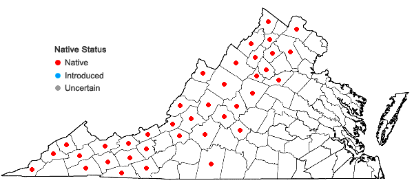 Locations ofCorydalis sempervirens (L.) Pers. in Virginia