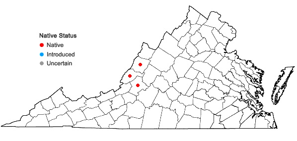 Locations ofCoscinodon cribrosus (Hedw.) Spruce in Virginia