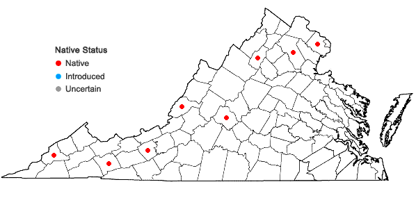 Locations ofCrataegus calpodendron (Ehrh.) Medik. in Virginia