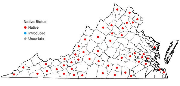 Locations ofCrataegus crus-galli L. var. crus-galli in Virginia