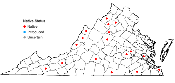 Locations ofCrataegus iracunda Beadle in Virginia