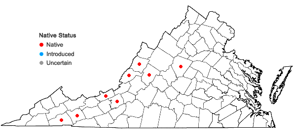 Locations ofCratoneuron filicinum (Hedw.) Spruce in Virginia