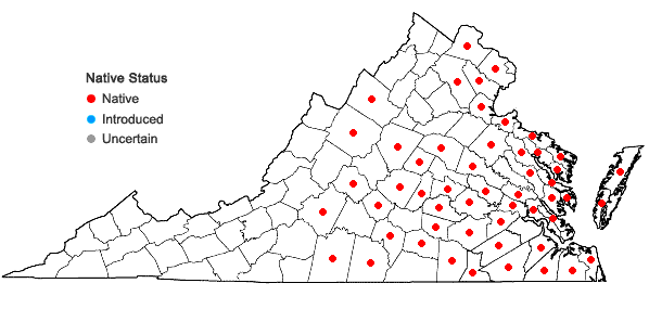 Locations ofCuscuta compacta Jussieu ex Choisy in Virginia
