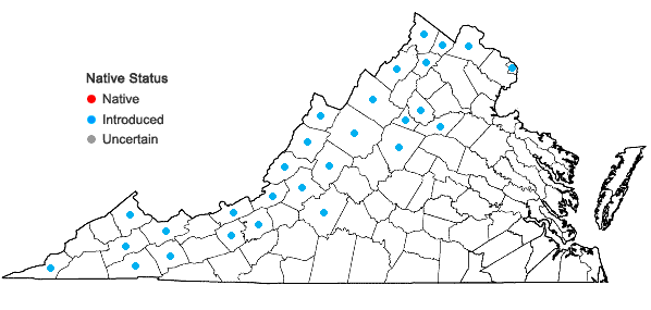 Locations ofCynoglossum officinale L. in Virginia