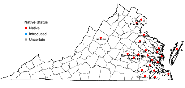Locations ofCyperus croceus Vahl in Virginia
