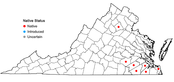 Locations ofCyperus plukenetii Fernald in Virginia