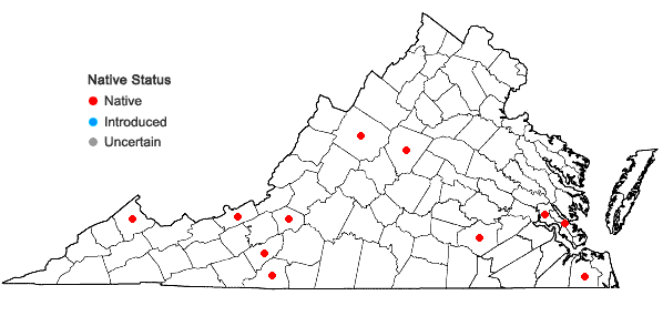 Locations ofCyrto-hypnum minutulum (Hedw.) W.R. Buck & H.A. Crum in Virginia
