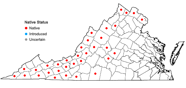 Locations ofCystopteris bulbifera (L.) Bernh. in Virginia