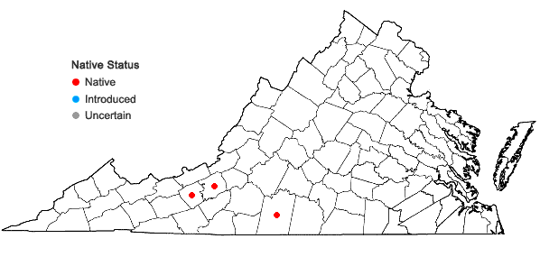 Locations ofCystopteris tennesseensis Shaver in Virginia