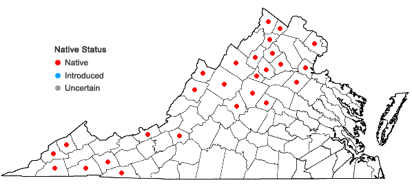 Locations ofCystopteris tenuis (Michx.) Desv. in Virginia