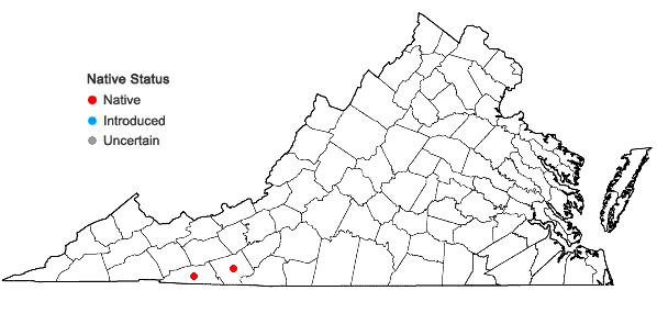 Locations ofDalibarda repens L. in Virginia