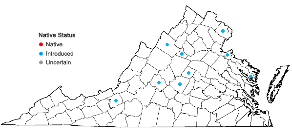 Locations ofDescurainia sophia (Linnaeus) Webb ex. Prantl in Virginia
