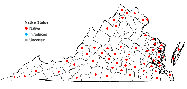 Locations ofDesmodium canescens (L.) DC. in Virginia