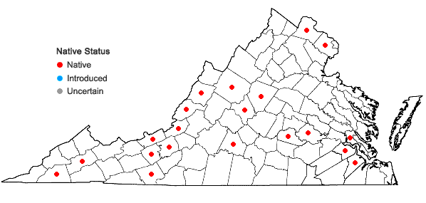 Locations ofDesmodium cuspidatum (Muhl. ex Willd.) Loudon in Virginia