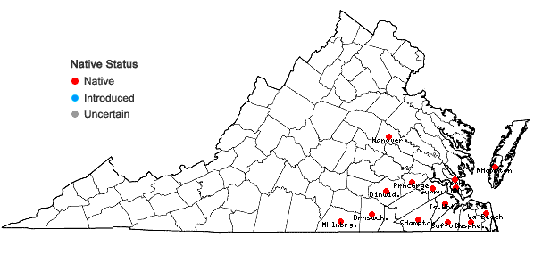 Locations ofDesmodium lineatum DC. in Virginia