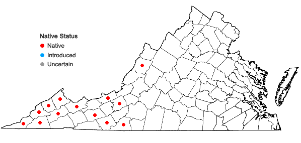 Locations ofDiarrhena americana Beauv. in Virginia