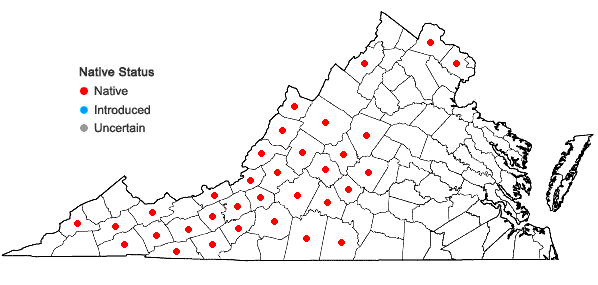 Locations ofDicentra eximia (Ker-Gawl.) Torr. in Virginia