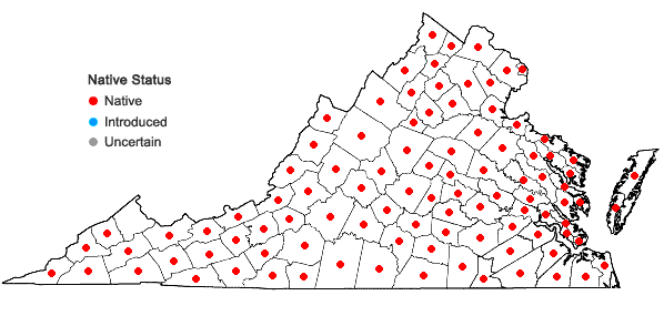 Locations ofDichanthelium acuminatum complex in Virginia