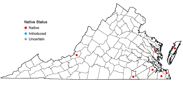 Locations ofDichanthelium dichotomum var. roanokense (Ashe) LeBlond in Virginia