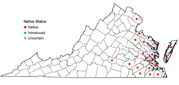 Locations ofDichanthelium oligosanthes (J.A. Schultes) Gould var. oligosanthes in Virginia