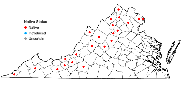 Locations ofDichanthelium oligosanthes (J.A. Schultes) Gould var. scribnerianum (Nash) Gould in Virginia