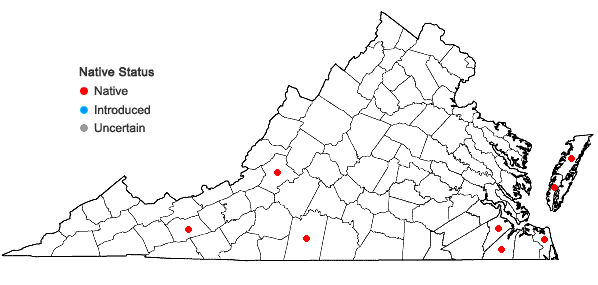 Locations ofDichanthelium ovale (Ell.) Gould & C.A. Clark var. ovale in Virginia