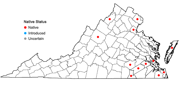 Locations ofDichanthelium spretum (J.A. Schultes) Freckmann in Virginia