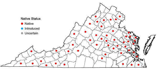 Locations ofDicranella heteromalla (Hedw.) Schimp in Virginia