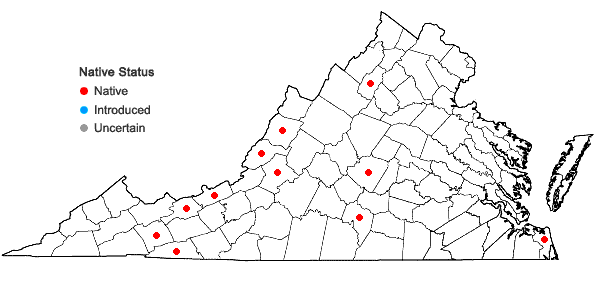 Locations ofDicranum bonjeanii De Notaris in Virginia