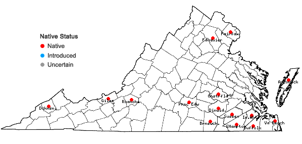 Locations ofDicranum condensatum Hedw. in Virginia
