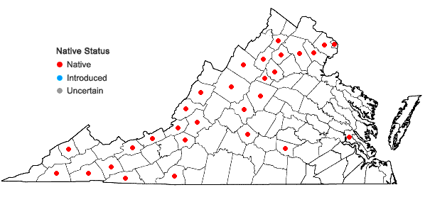 Locations ofDicranum fulvum Hooker in Virginia