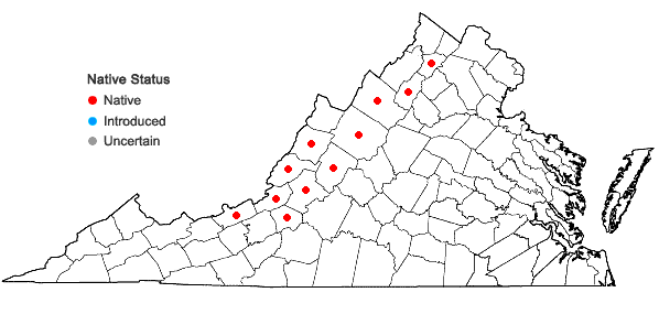 Locations ofDicranum polysetum Swartz in Virginia