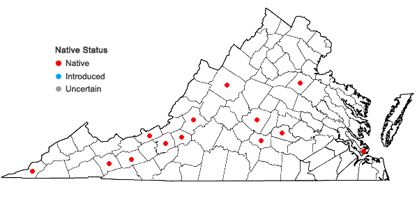 Locations ofDicranum spurium Hedwig in Virginia