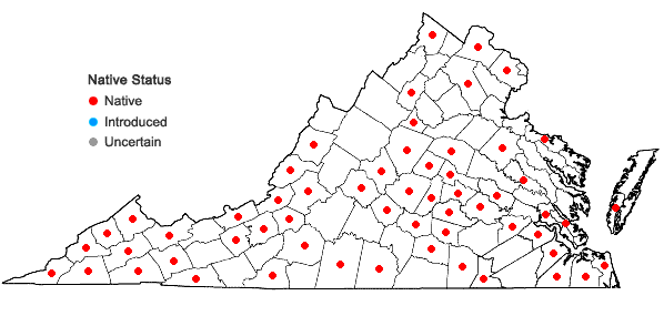 Locations ofDigitaria ciliaris (Retz.) Koeler in Virginia