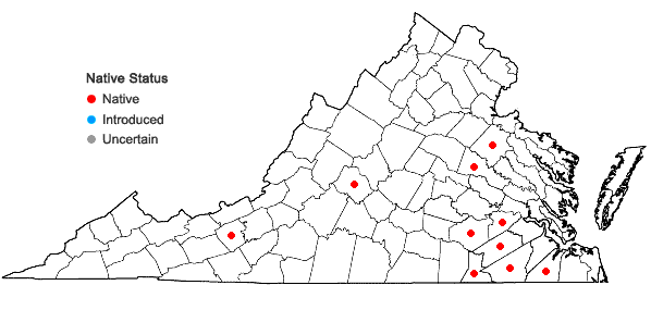 Locations ofDigitaria cognata (J.A. Schultes) Pilg. in Virginia