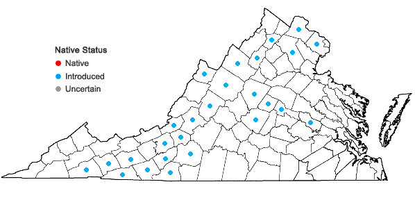 Locations ofDipsacus laciniatus L. in Virginia