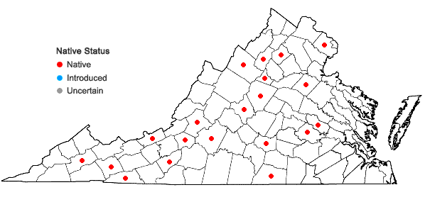 Locations ofDitrichum pusillum (Hedw.) Hampe in Virginia