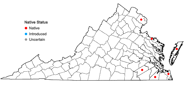 Locations ofDrosera intermedia Hayne in Virginia