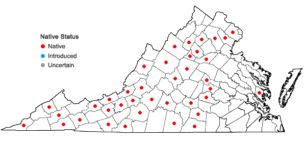 Locations ofDrummondia prorepens (Hedw.) E. Britton in Virginia