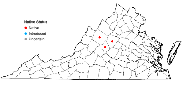 Locations ofDrymocallis arguta (Pursh) Rydberg in Virginia