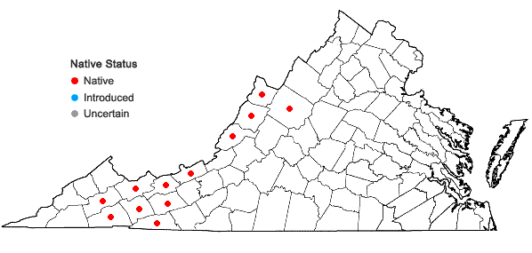 Locations ofDryopteris campyloptera (Kunze) Clarkson in Virginia