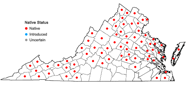 Locations ofDryopteris carthusiana (Vill.) H.P. Fuchs in Virginia