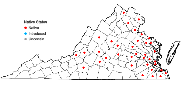 Locations ofDryopteris celsa (Wm. Palmer) Knowlt., Palmer & Pollard ex Small in Virginia