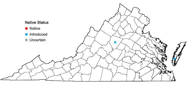 Locations ofEchinochloa frumentacea Link in Virginia