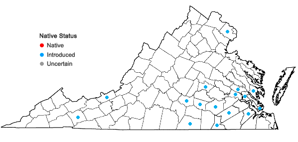 Locations ofEgeria densa Planchon in Virginia
